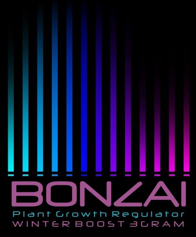 Bonazi Winter Boost
