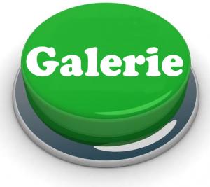 galerie button
